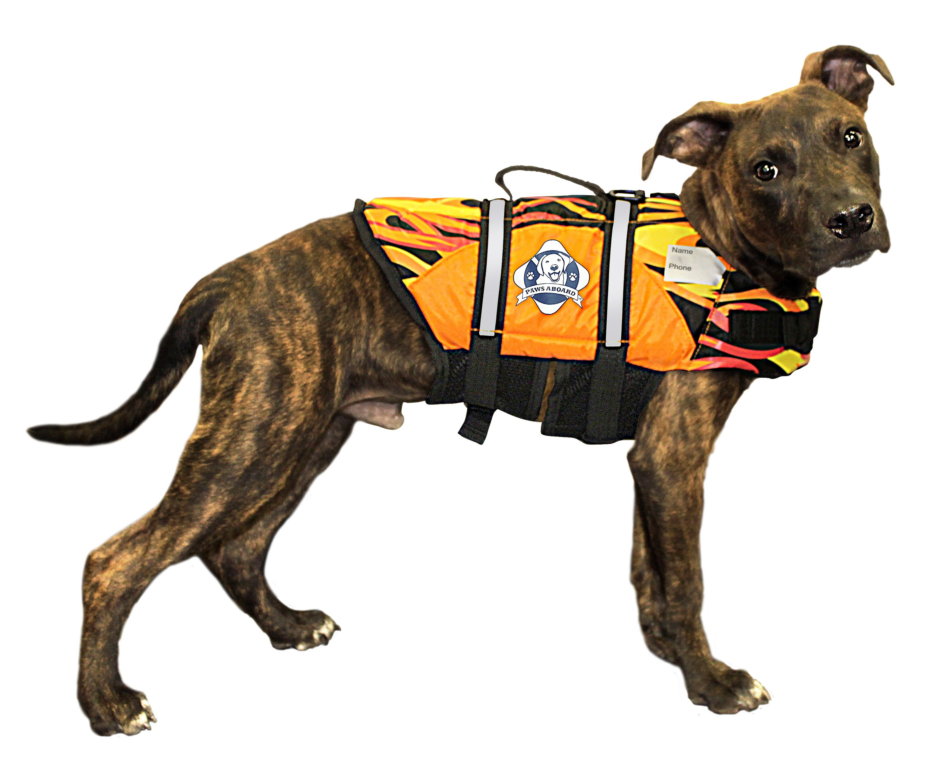 Doggy Life Jacket M Flames